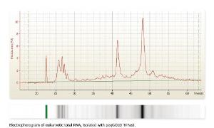 DNA/RNA/protein purification reagent, peqGOLD TriFast™ and TriFast™ FL